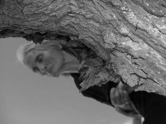 Olivenbaumfrau.JPG