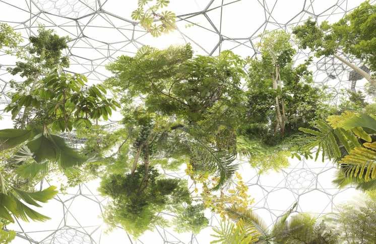 Galerie Lichtblick-Michael Najjar.jpg